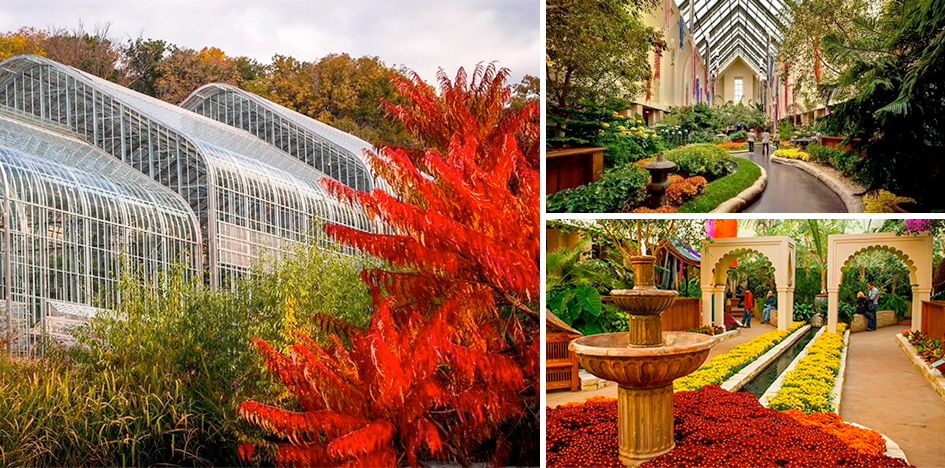 lauritzen gardens fall -#main