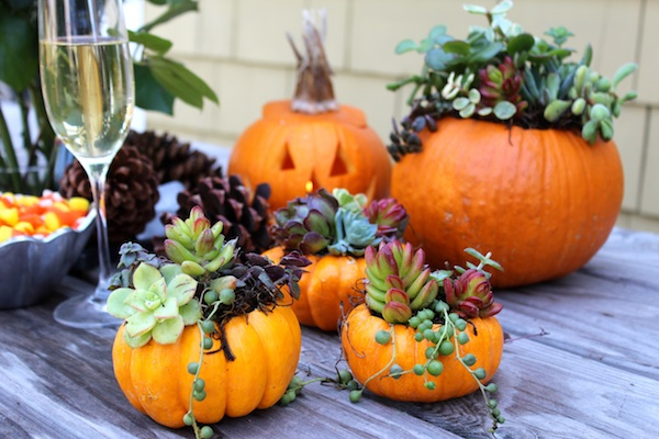 DIY Ideas Decorating for a Thanksgiving Gathering
