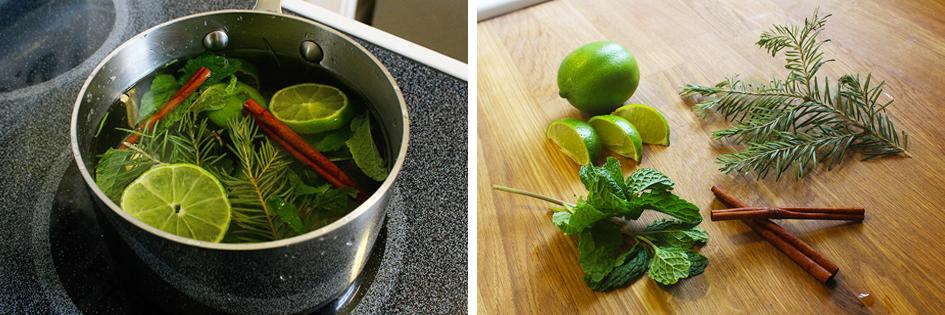 Lime + Pine Potpourri Recipe | via: www.npdodge.com