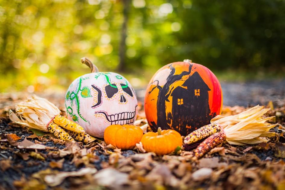 Pumpkin Patches Omaha, Nebraska