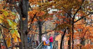 10 Places to See Fall Foliage Near Omaha, Nebraska